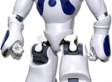 Robot, sostituiranno le badanti dal 2015