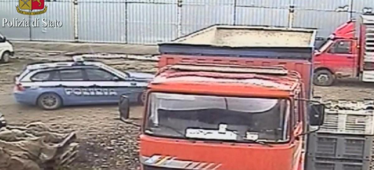 Cerignola, 54 persone costrette a lavorare come animali nella raccolta dei carciofi