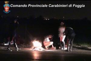 fermi prostituzione foggia
