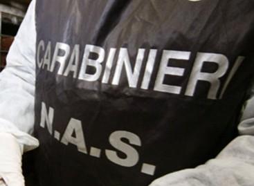 Foggia, i Nas sequestrano 10 tonnellate di materie prime in un' industria dolciaria