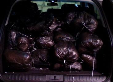 Cerignola, trovati 70kg di marijuana nel bagagliaio di una Range Rover