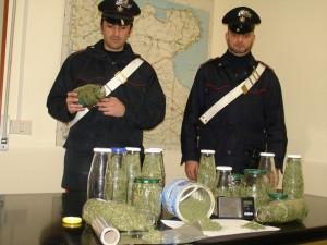marijuana arresto san severo