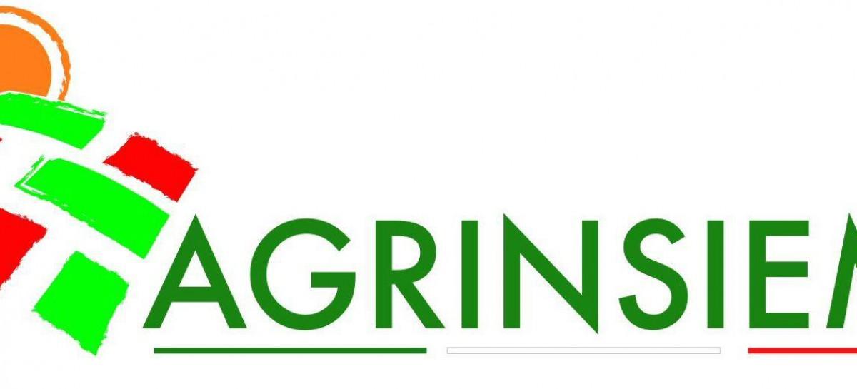 "Agrinsieme: ""Per l'agricoltura pugliese più utili le proposte delle polemiche"""