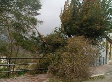 Allerta Meteo: venti forti e probabili acquazzoni