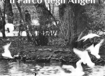 """Recensione: """"Il Parco degli Angeli"""" di Angela Nardella"""