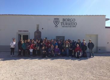 """Foggia, gli studenti del """"Poerio"""" a scuola di viticoltura – FOTO"""