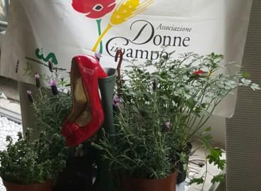 A Foggia le piantine Donne in Campo-CIA contro la violenza di genere