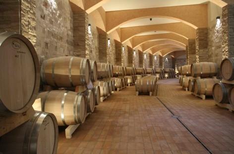 """""""In Vino Futuro"""": Cantine Le Grotte e il file rouge di storia e sviluppo"""