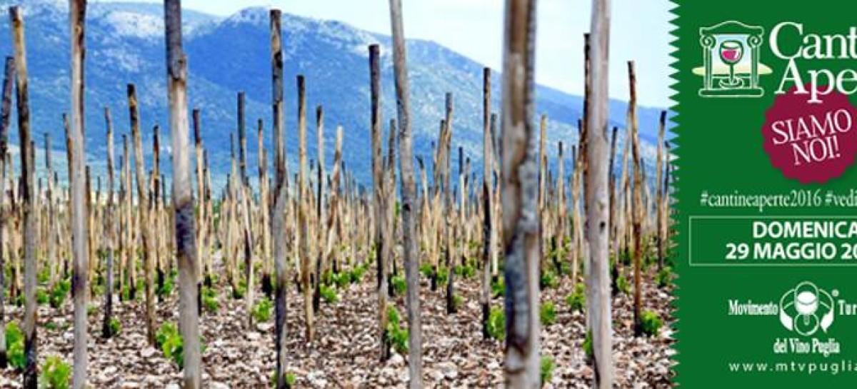 IN OGNI SENSO BIODINAMICA-MENTE Domenica 29 maggio la vignaiola Valentina Passalacqua propone un percorso di wine trekking, in occasione di Cantine Aperte