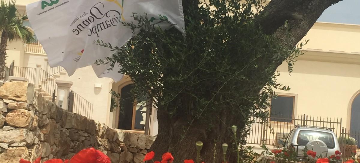 Cantine Aperte: in Puglia format innovativi di turismo esperienziale