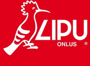 Lipu- Eolico in Capitanata: 21 aprile, procedimento penale all'udienza finale