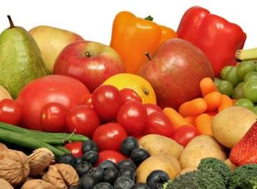 A Carpino sinergia scuola-aziende per educare all'alimentazione sana e tradizionale