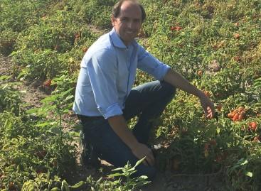 Nasce FederBio Puglia, il primo organismo interprofessionale regionale del biologico