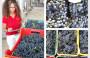 Vendemmia notturna: le notti dell'uva a Borgo Turrito – 25 Agosto