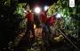 Ecco la notte dell'uva: la vendemmia al chiaro di luna
