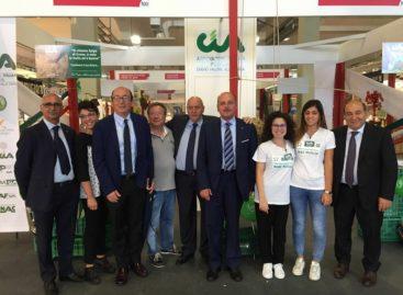 """Patto per il Sud, Cia Puglia: """"Ora misure immediate per l'agricoltura"""""""