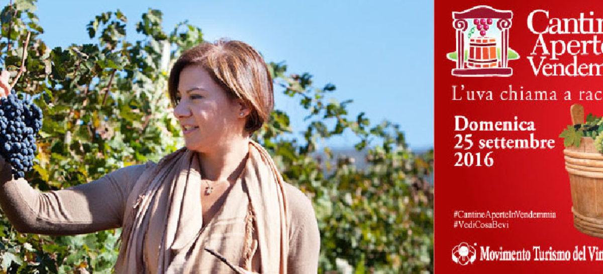 """Cantine Aperte In Vendemmia: """"Il Sole nel Vigneto –un'esperienza di paesaggio e di vino"""""""