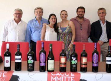 Festa del Cacc'e Mmitte: stasera l'Aureli, domenica Moreno e i dj di Radionorba