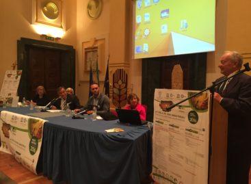 Dieta Mediterranea, Foggia si candida a Centro Studi Internazionale