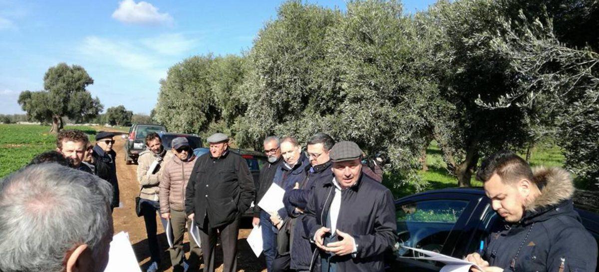 Maltempo, Scanavino visita le aziende pugliesi danneggiate
