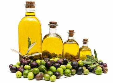 Olio d'oliva: proprietà ed usi principali