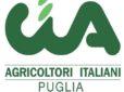 Cia Puglia, tre ricorsi vinti: da Agea contributi aggiuntivi per 100 olivicoltori