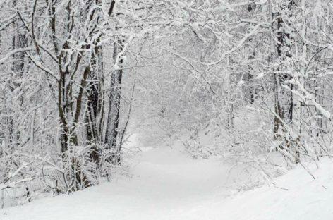 Emergenza neve, dopo tre giorni Vico fuori dal tunnel dell'emergenza